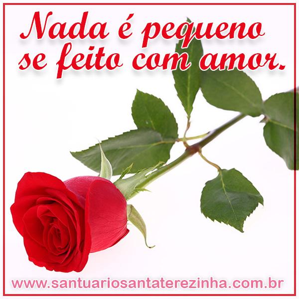 Rosa Virtual