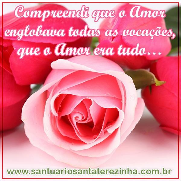 Rosa Virtual 004